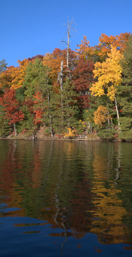 Minocqua Pontoon Cruises pontoon fall